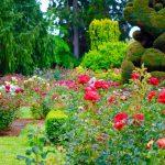 「庭」はイギリス英語で何と言うのでしょうか?「Garden」と「yard」の違いについて紹介