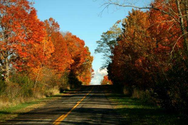 イギリス英語で「秋」の言い方:「Fall」と「autumn」について