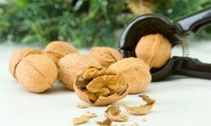 「nut」、「nuts」はイギリス英語でどういう意味?イギリス英語とアメリカ英語のスラングを紹介