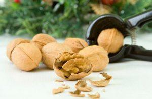 「nut」、「nuts」はイギリス英語でどういう意味?