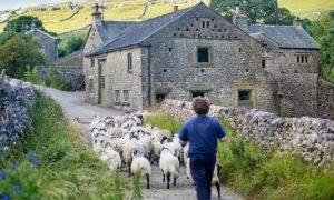 イギリスの美しい景色を楽しめるお勧めインスタグラムアカウントを紹介