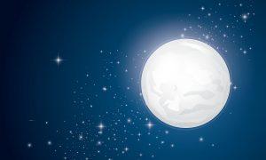 イギリスには「お月見」や「月にウサギが見える!」という表現をするのか?