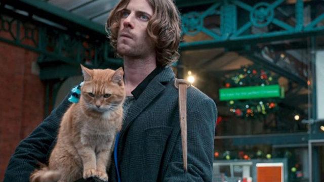 「ボブという名の猫 幸せのハイタッチ」を観た際の感想と映画中で使われたイギリス英語を紹介